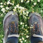 Melyik a legjobb futócipő? - A tesztek szerint felesleges a legdrágábbak között keresgélni