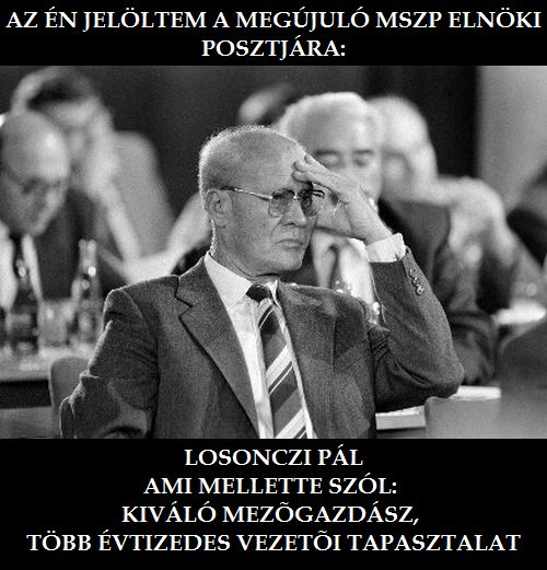 mem-losonci-pal