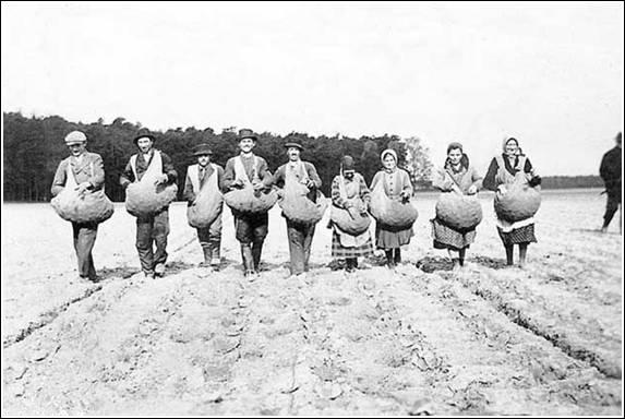 Burgonyavetés az uradalomban az 1930-as években. (Sulinet.hu) Szerettem volna illuzstrálni a posztot, de gyakorlatilag fotó sem készült ezekről az emberekről.