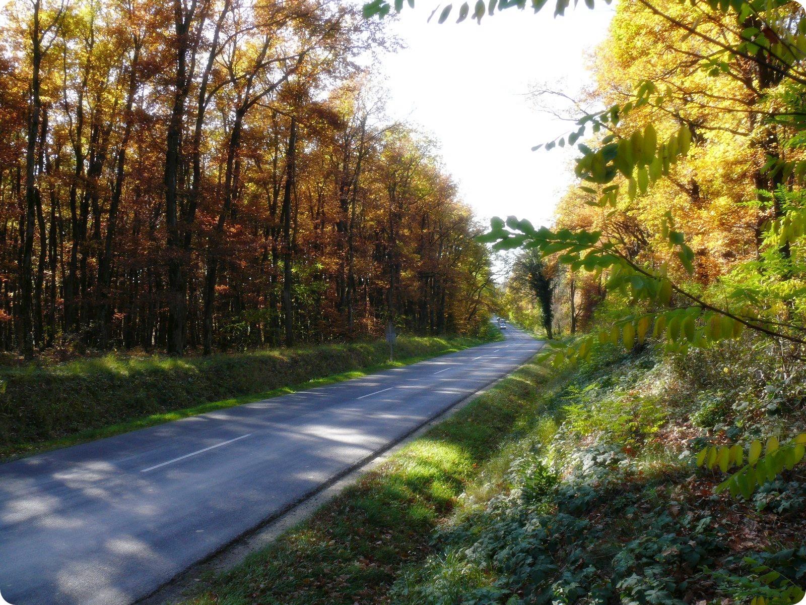 Az az út Kőszeg és Horvátzsidány között