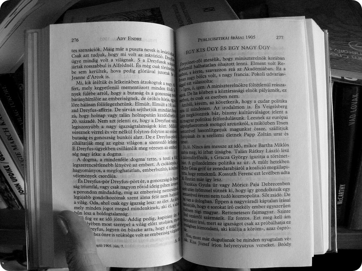 Gusztusos könyv. Mondjuk a lapok lehetnének vastagabbak, és akkor nem lennének kicsit áttetszőek az oldalak.