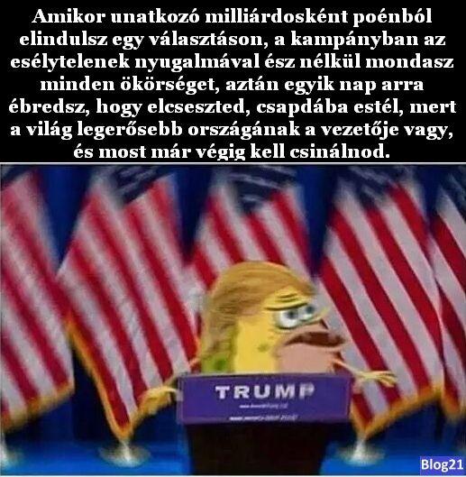 Értékelve Donald Trump győzelmét