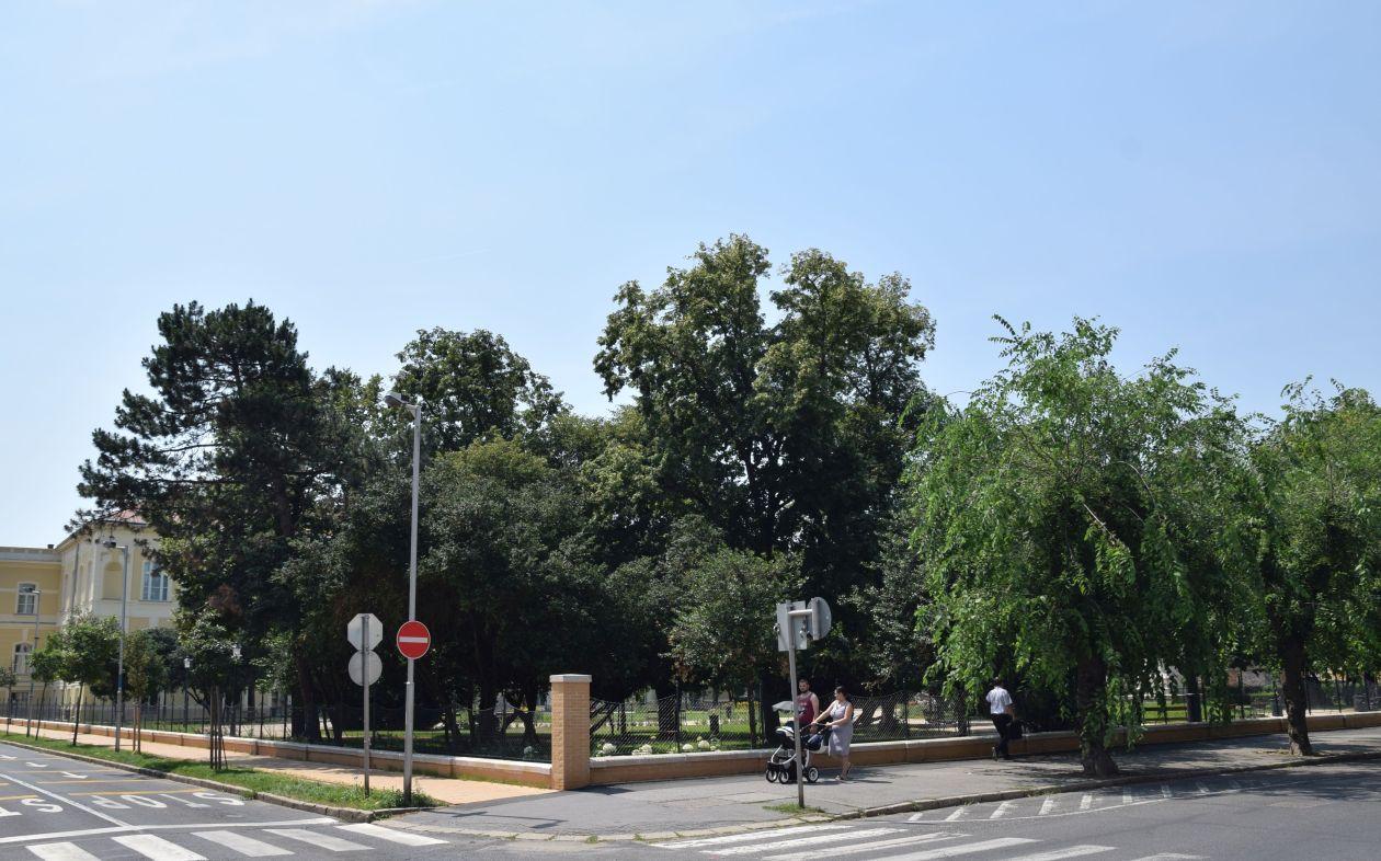 muzeumpark-nyar-1
