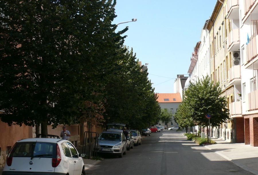 Irigylem a Malom utca fáit.